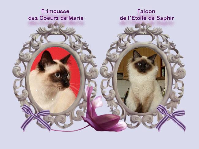 cadre_mariage_2012_frimousse_falcon